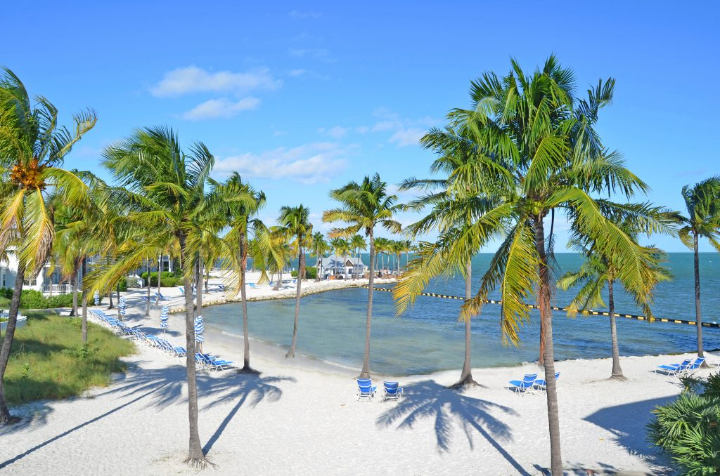 Private white sand beach with palm trees at Tranquility Bay Resort, Florida Keys