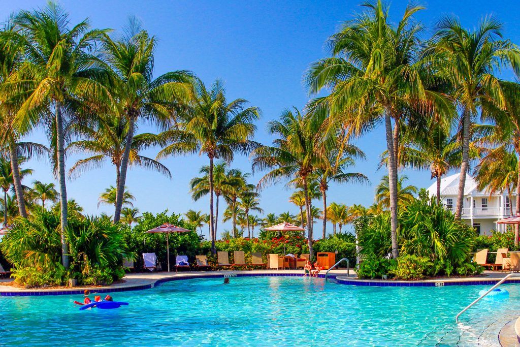 Child swimming in pool surrounded by palm trees at Tranquility Bay