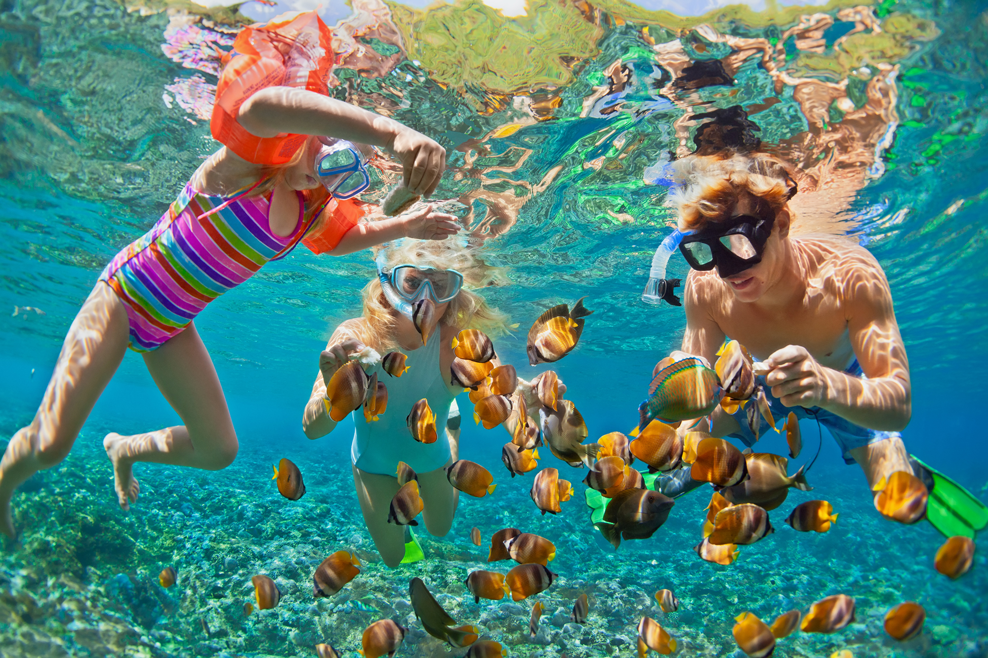 Family snorkeling with tropical fish in the Florida Keys