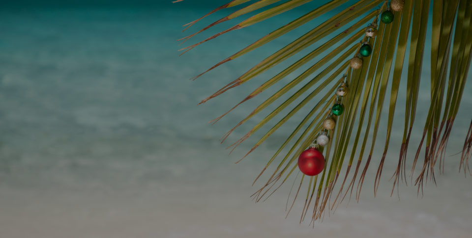 Palm tree decorated with Christmas ornaments at a beach in the Florida Keys